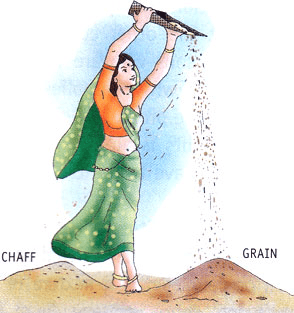 Image of winnowing