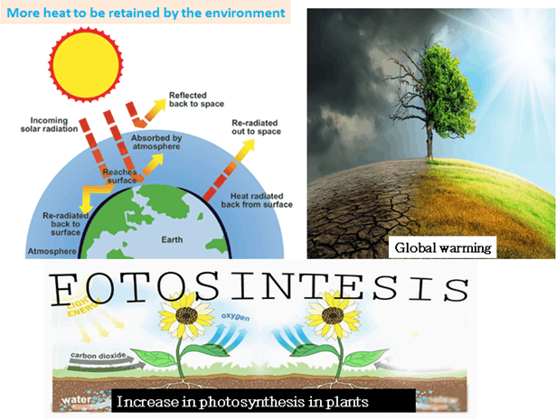 Image of increase In photosynthesis in plants
