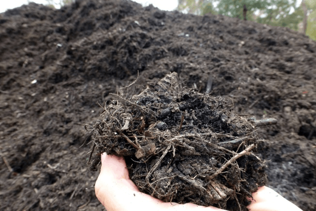 Figure shown the Compost