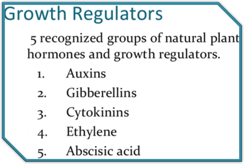 The five main plant growth regulators
