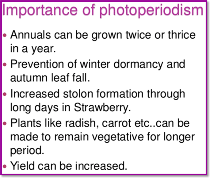 Image of the Importance of photoperiodism