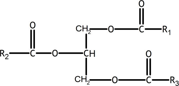 Q 7 Structure of Triglyceride