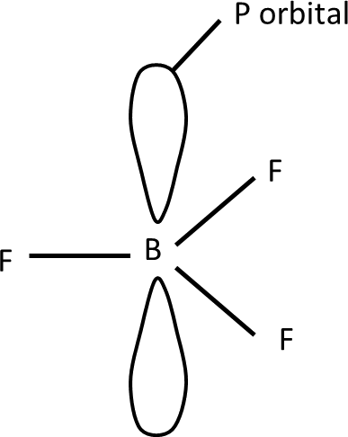 Q 7 i Structure of Boron Trifluoride of P orbital