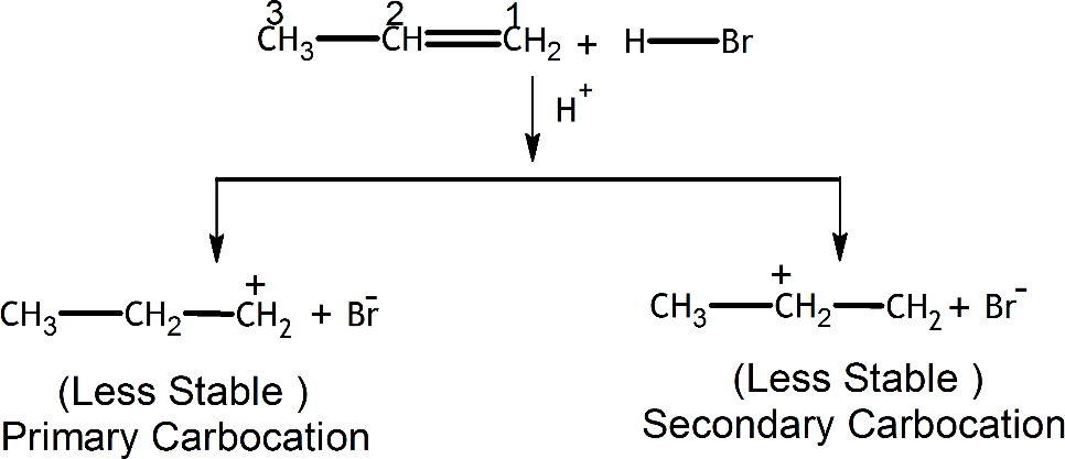 Q 16 Ans 1 Structure of Peimary and Secondary Carbocation