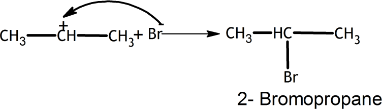 Q 16 Ans 2 Structure of Bromopropane