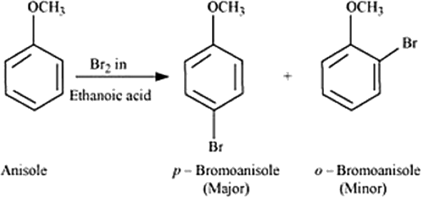 Q 31 iii Anisole p-Bbromoanisole and o-Bbromoanisole
