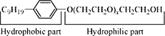 Q 5 Ans The Hydrophilic and Hydrophobic Parts in the Molecule