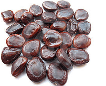 Picture of tamarid seeds