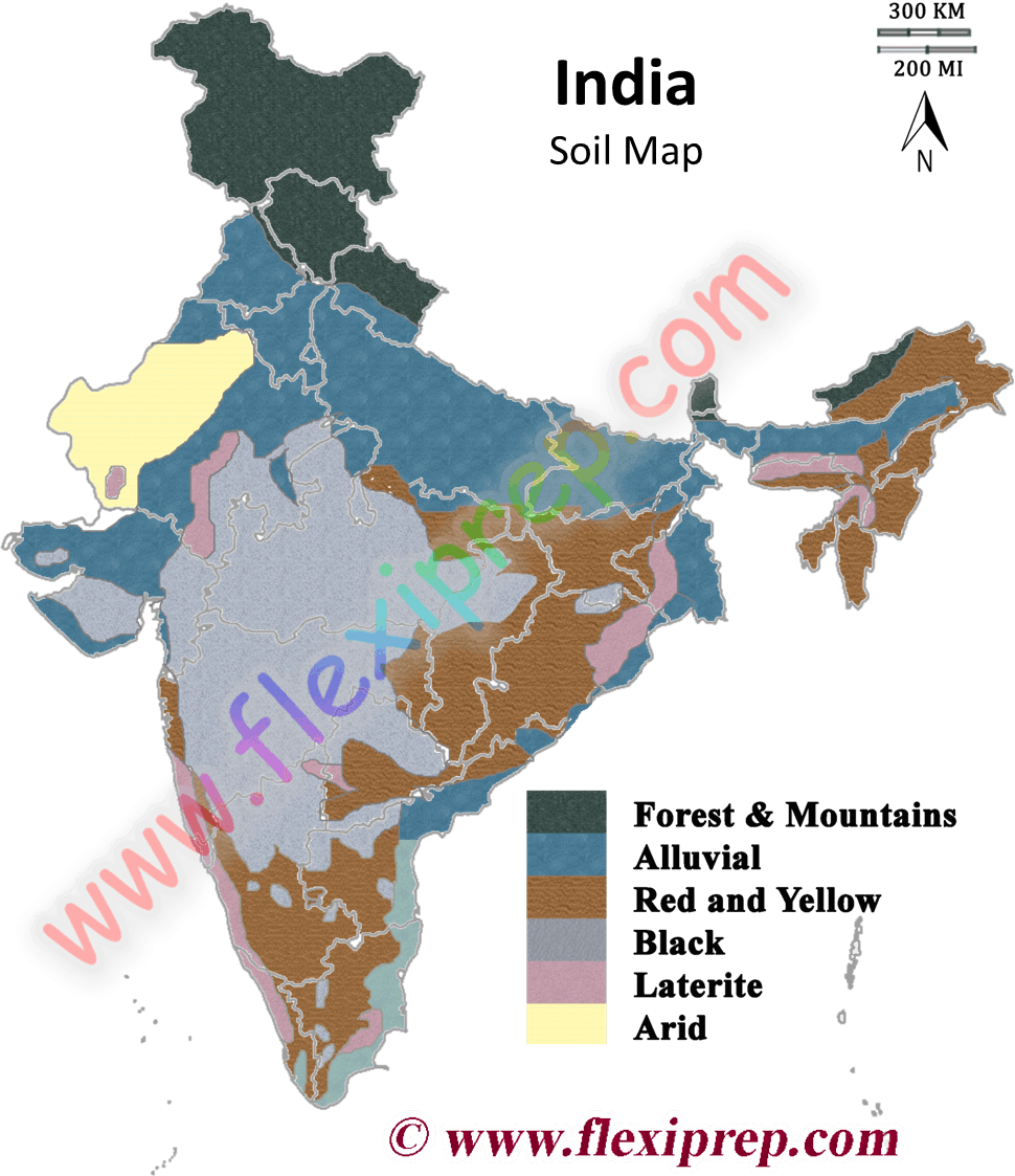 Ncert class 10 geography solutions chapter 1 resources for Soil in india