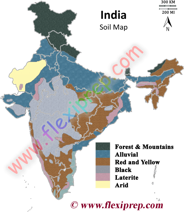 Ncert class 10 geography solutions chapter 1 resources for Soil erosion in hindi