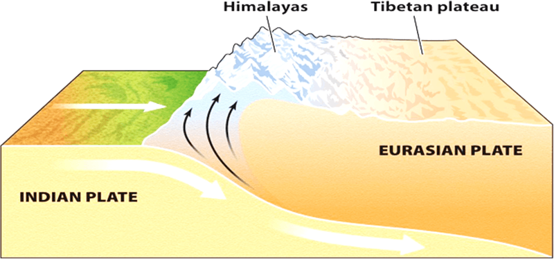 Himalaya formation due to convergence