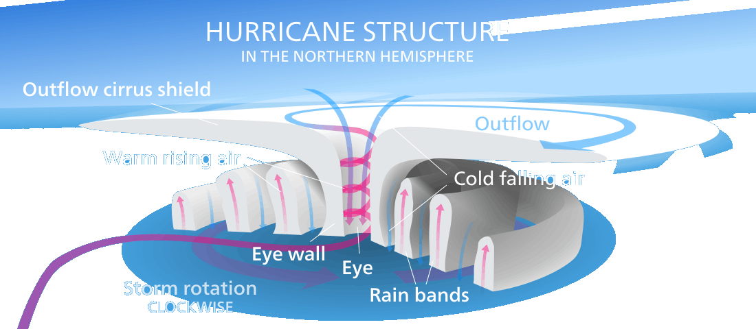 Structure of tropical cyclone with the eye and the clouds in bands