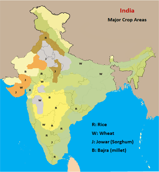 Major Crop Areas of India
