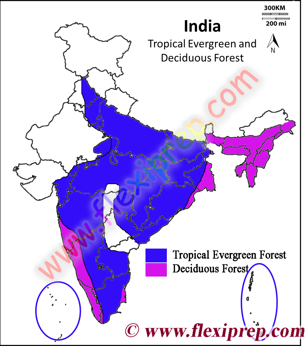Tropical Evergreen and Deciduous Forests on the map of India