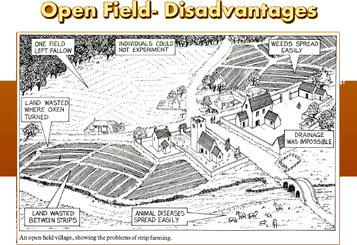 Disadvantages of open field system in one image