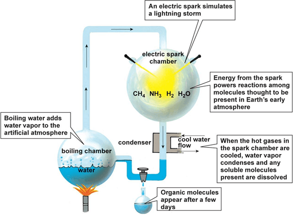 Result for miller and urey experiment