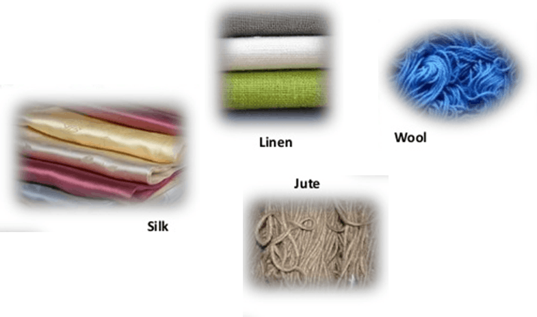 Image result for Examples of Natural Fibres