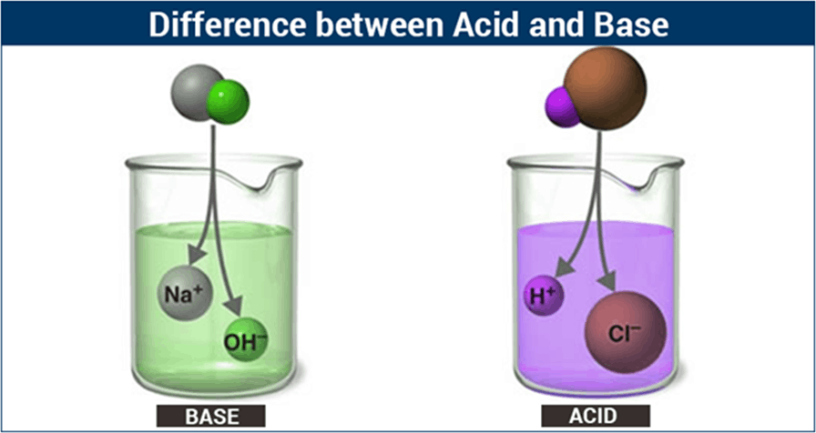 Diagram shows differences between acids and bases.