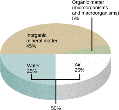 The soil contains air, water, organic matter and inorganic m …