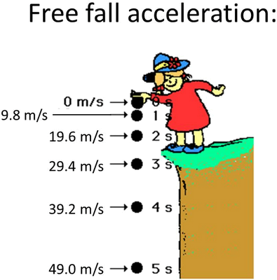 Q 8 Image Showing Free Fall Acceleration.