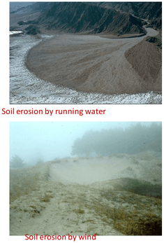 Q 2 Image Showing Soil erosion.