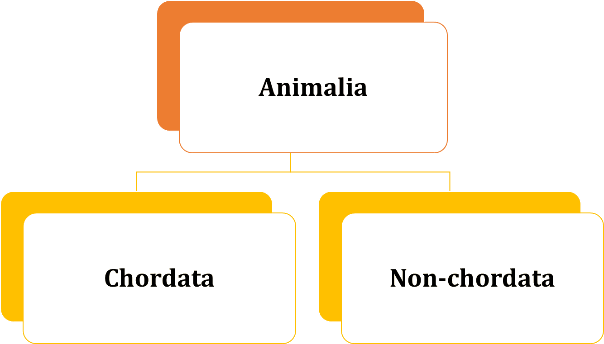 Image of Criteria for Deciding Subgroups among Animals for D …