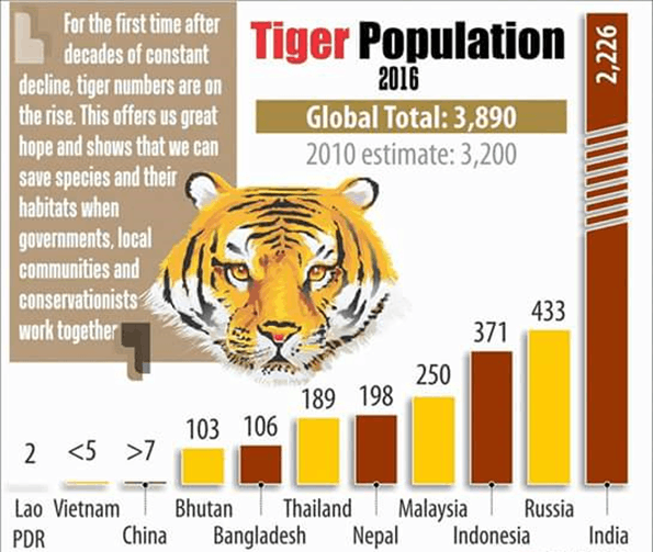 Image of Tiger Population of 2016