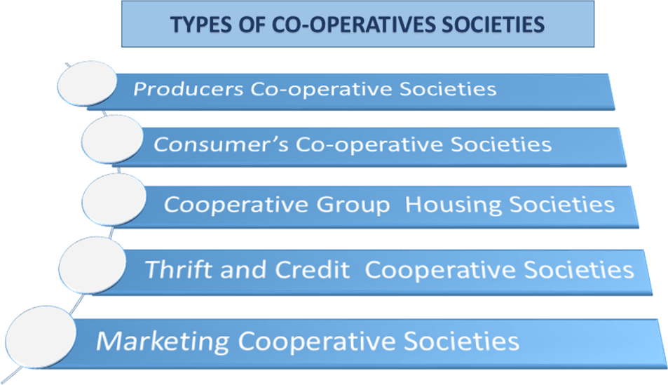 Types of co-operative society