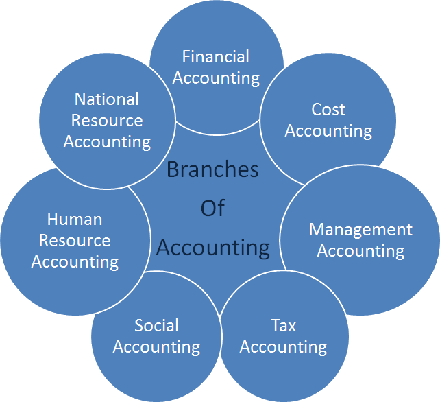 Image of Branches of Accounting