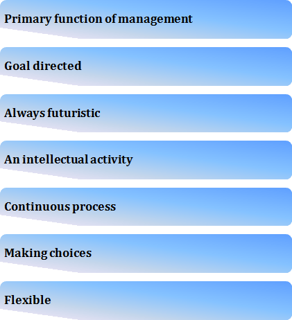 Image of the Features of Planning