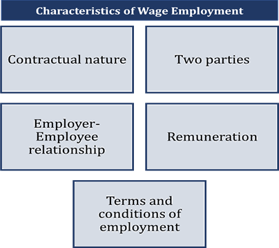 Characteristics Of Wage Employment