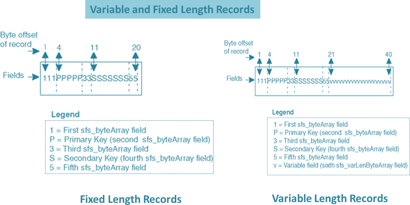 Variable and Fixed Length Records Image