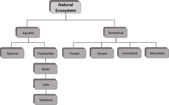 Image of Image of types of ecosystems