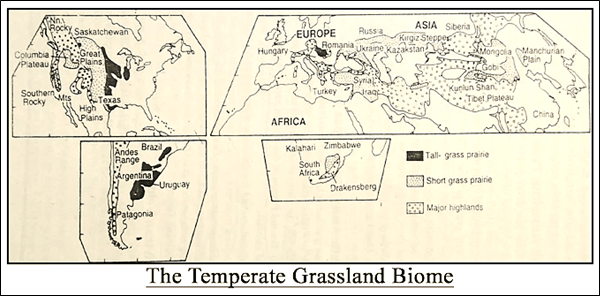 The Temperate Grassland Biome