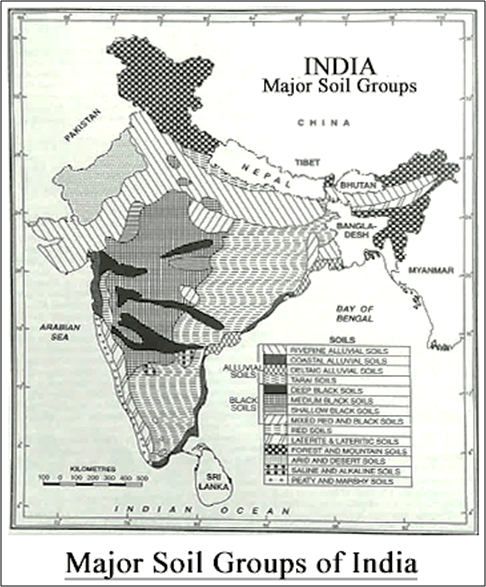 Major Soil Groups of India