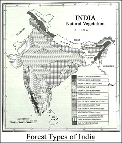 Forest Types of India