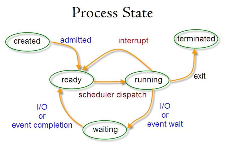 Operating system essay