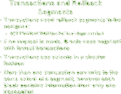Transaction and rollback segments.
